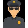 Поліцейська діяльність